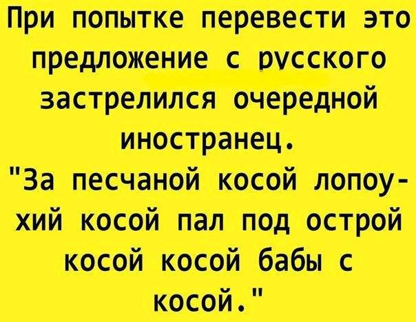 https://cs7065.vk.me/c836133/v836133864/265d3/FRAXKamHF10.jpg