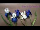 DIY Paper Iris flowers from crepe paper Flor del iris del papel crepe