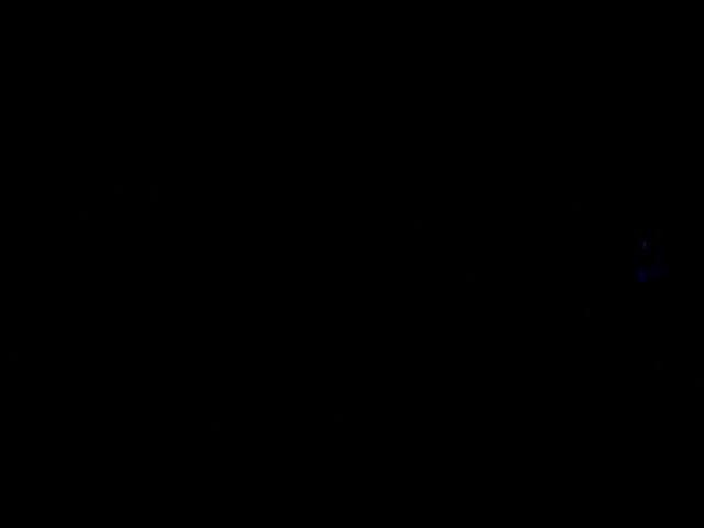 FLAGZ X Leiny - Cavalier