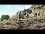 Banco De Gaia - Hu! (Unusual Cosmic Process Remix)