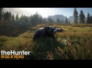 Let`s Play theHunter Call of the Wild 5 ▲ Охота на медведя, лось по пути