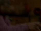 Анонс и рекламный блок (ОРТ, 11.02.1998) Calve, Московское УПП-11, Omo, Glade, Цветы России