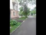 Даниил Шакиров - Live