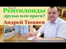 Андрей Тюняев. Рептилоиды - друзья или враги. Часть 4. Народное славянское радио