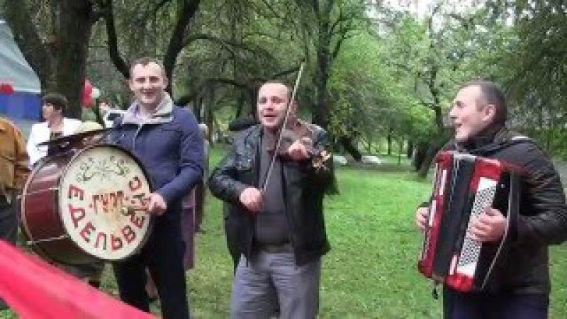 Гурт. Едельвейс 2015 р Золотарево