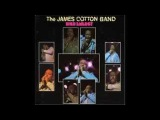 The James Cotton Band  -- Chicken Heads