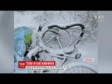 На Льввщин таксист збив велосипедиста тло загиблого викинув за клька клометрв вд авар