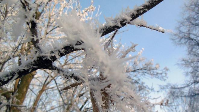 Резкое похолодание ожидается в Москве в середине недели #новости@mosc1   На смену оттепели к середине недели в М�...