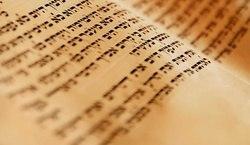 Самарцев призывают познакомиться с «Литературным Израилем»    В програ