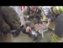 Пожарные спасли жизнь коту, пострадавшему при пожаре.