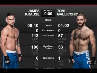 The Ultimate Fighter 25 Джэймс Краус vs Том Галличио обзор боя