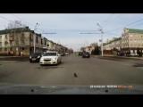 В Татарстане подросток спас из-под колёс машины котёнка, переходившего дорогу