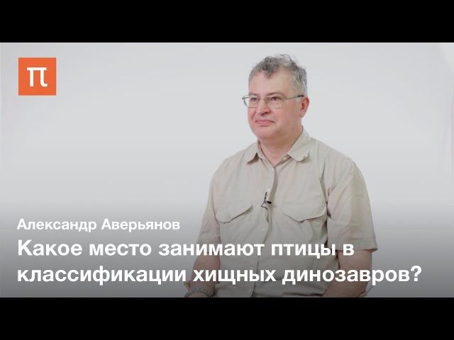 Аверьянов Александр Олегович: Хищные динозавры и птицы