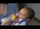 Paced Bottle Feeding by The Milk Mob