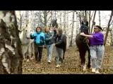 Кони в яблоках' Электроклуб HD2