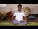 FALKE SPORT Йога с с преподавателем центра аюрведы и йоги Керала