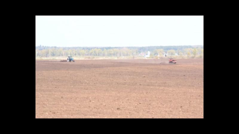 День за днем. Аграрии СПК Племзавод Алга вспахали и засеяли половину земель