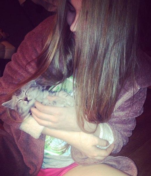 Отдам даром милого котёнка, к лотку приучен , маленький ,годика нет ,