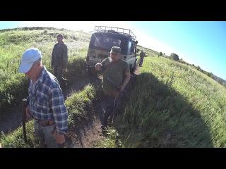 Охота с легавой Открытие осенней охоты 2016г. hunting with Pointer