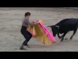 Девушка-тореадор против быка (Испания). Бык закатал, но она восстала!