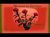 Целозия из бархата. Интерьерные цветы. Часть 2 Ольга Канунникова