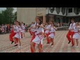 Сокирянська гімназія. Випуск 2016