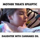 Конопляное масло и эпилепсия