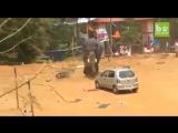 В Индии на фестивале Амбалаппужа слон неожиданно пришел в ярость и устроил погром