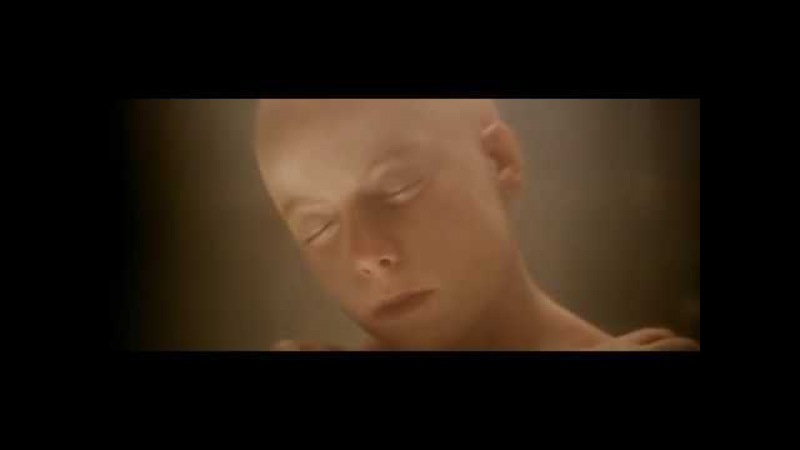 Чужой 4: Воскрешение Alien Resurrection. Рождение королевы чужих из Рипли