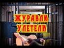 Воровские песни под гитару Журавли улетели Блатные