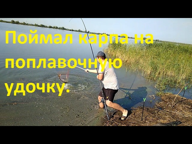 Поймал карпа на поплавочную удочку.Чуть не упал,но удержался на ногах.