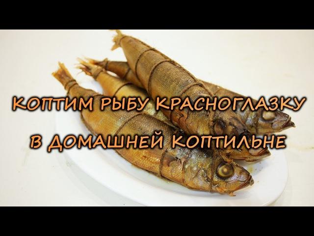 Коптим рыбу красноглазку в домашней коптильне
