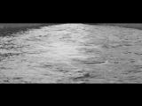 Шура Кузнецова - Не тонуть, а плыть