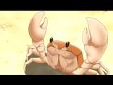mr Crab ams_webm