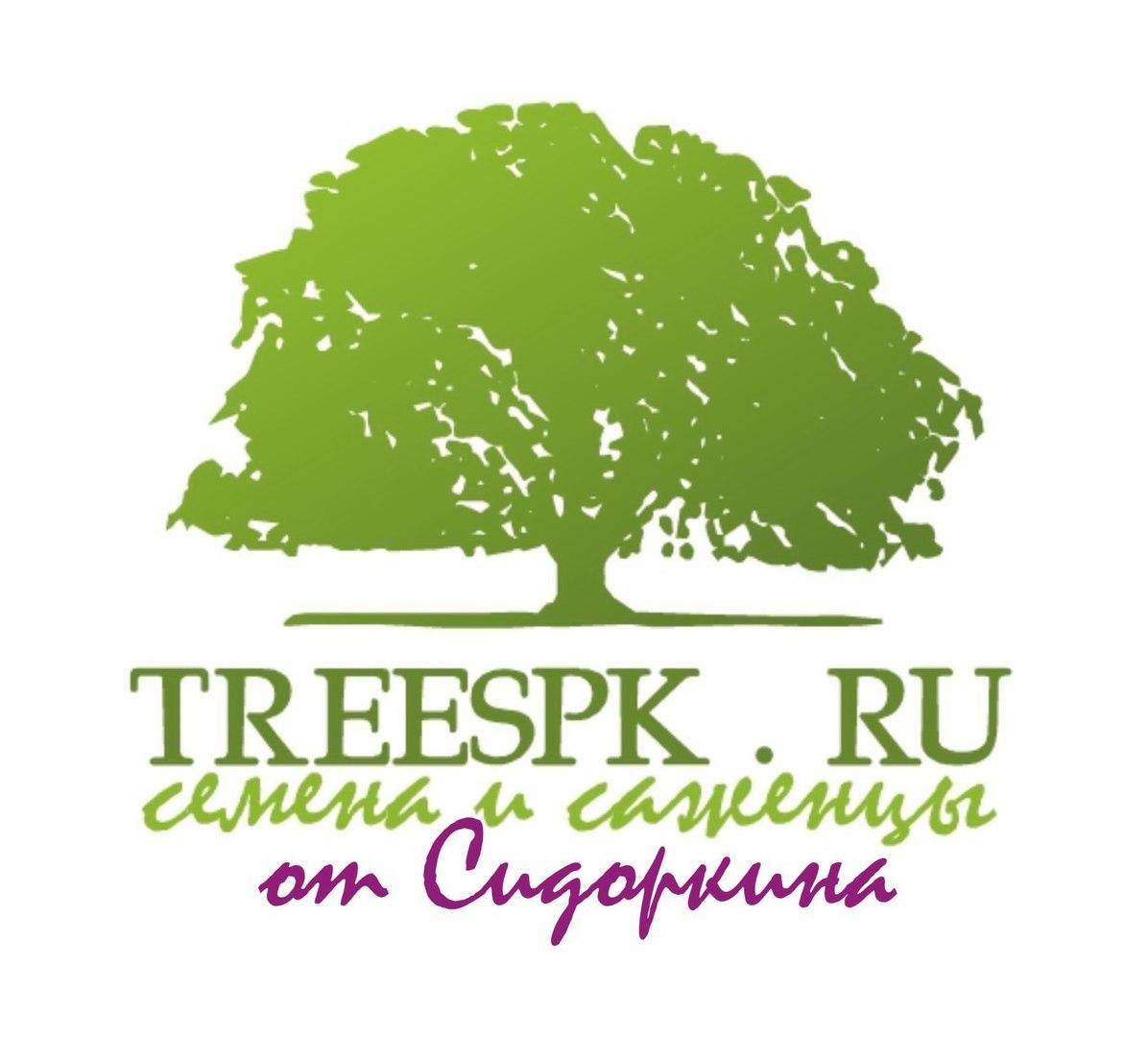 Семена кустарников заказать в Новокузнецке