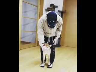 Aww Heenim's interaction with his dog are so cute! ><
