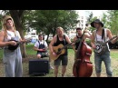 LED ZEPPELIN Black Dog Hillbilly Version by STEVE N SEAGULLS - Metal Injection