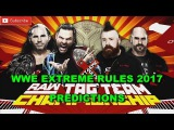 WWE Extreme Rules Raw Tag Team Championship The Hardy Boyz vs. Cesaro &amp Sheamus Steel Cage Match