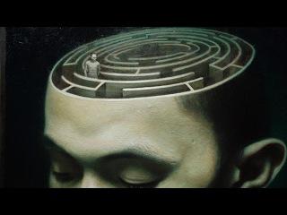 Медики в тупике.Мозг человека не для того,чтобы думать.Документальный фильм