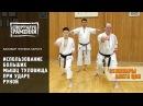 Каратэ Шотокан Уроки Олега Цоя Использование больших мышц туловища при ударе рукой
