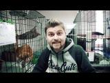 Популярный блогер Макс Брандт в гостях у Муркоши