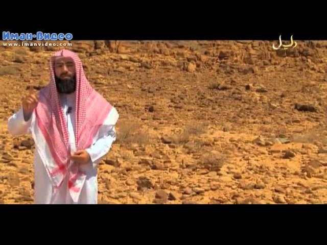 Истории о пророках (20 из 30): Муса, часть 4