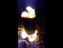 вогняне бисеня