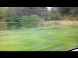 Вид из окна поезда Сапсан на скорости 240км/ч