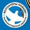 Волонтёры Победы. Калининградская область