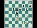 Шахматы. Стратегические приемы. Волнорез