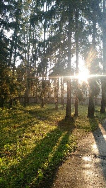 фото из альбома Алексея Тихонова №3
