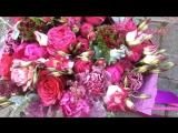 Какие же они крутые, эти малиново-фуксиевые оттенки? Добро пожаловать в мой цветочный рай??