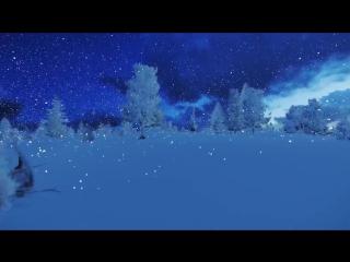 Футаж - зимний лес
