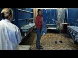 Видео к фильму «Я не вернусь» (2014): Трейлер